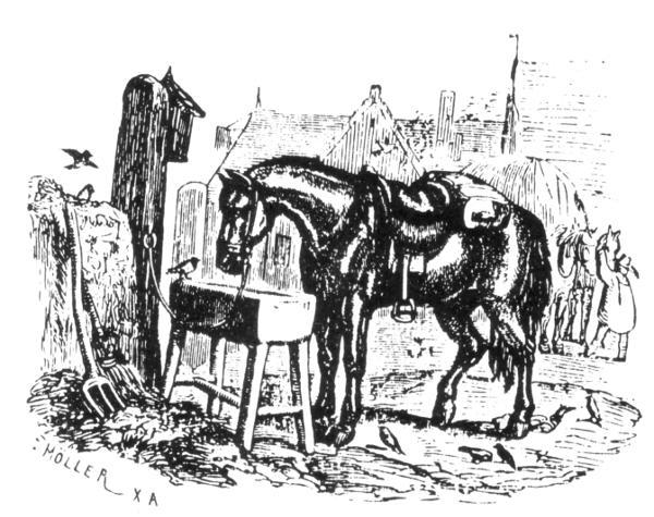 BarnProject Wilhelm För ~ Johann Fabler Gutenberg Femtio iuXZkP